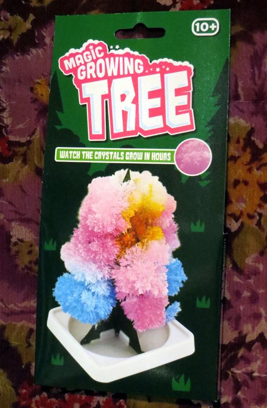 2015_Dec 18_Magic Growing Tree