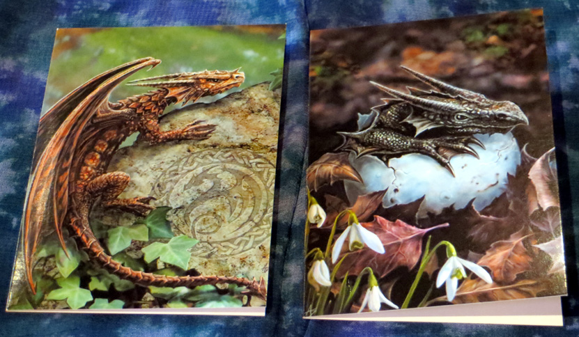 2015_June 05_Dragon Notecards 1