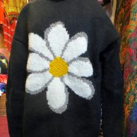 2017_Jan 07_Daisy Jumper