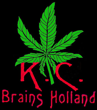 KC BRAINS leaf logo
