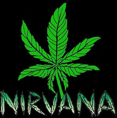 NIRVANA leaf logo