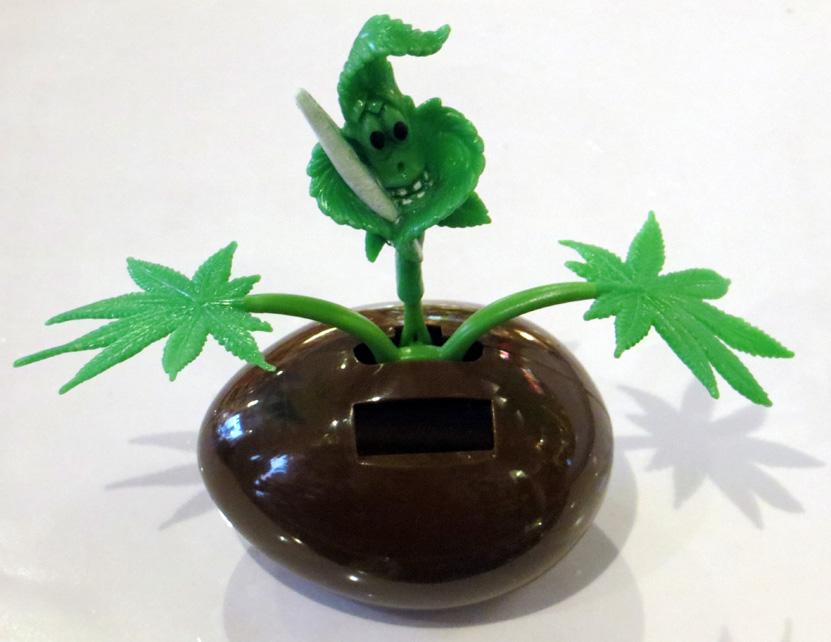 Rocking Weed