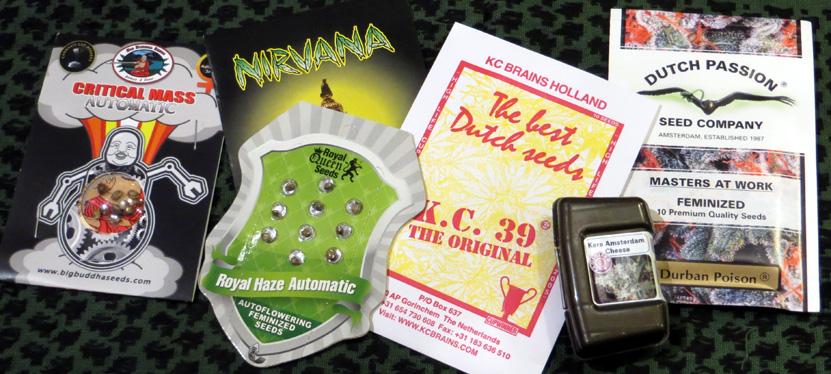 2015_July 22_Cannabis Seeds